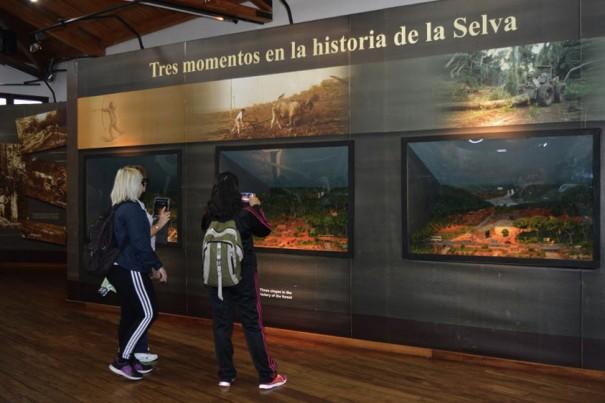 Axis y Netcamara Iguazu Argentina