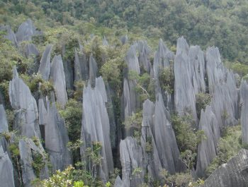 National Park of Mulu Borneo