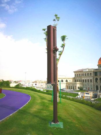 LDA en Katara Hills Gardens